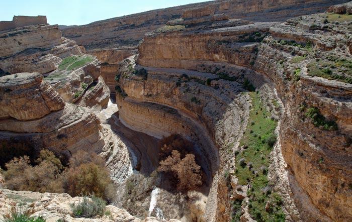 Оазис Тамерза, Тунис. Фото: Jacques Croizer/Photos.com