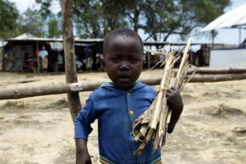 Ребенок-беженец, собирающий дрова, чтобы помочь родителям в приготовлении пищи, 6 сентября 2003 в лагере Салала на севере центральной части Либерии. Фото: Пий Утоми Экпей /AF /Getty Images
