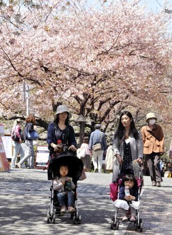 Япония: улыбающиеся лица, страдающие души. Фото: YOSHIKAZU TSUNO/AFP/Getty Images