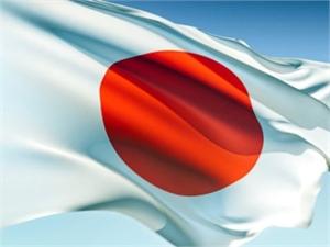 Японское правительство ушло в отставку в полном составе. Фото j-in.org.ua