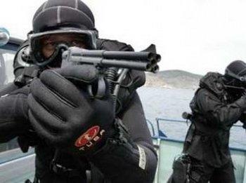 Пули, убившие Усаму бен Ладена, были специально смазаны свиным жиром. Фото с topnews.ru