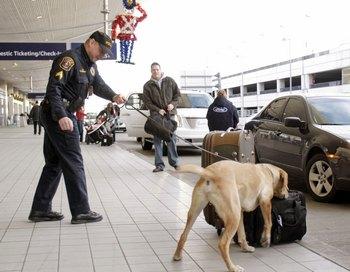 Меры безопасности на рейсах в США станут не только жесткими, но и непредсказуемыми. Фото: Bill Pugliano/Getty Images