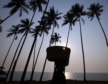 Нападение на 9-летнюю девочку из России в индийском курортном  штате Гоа