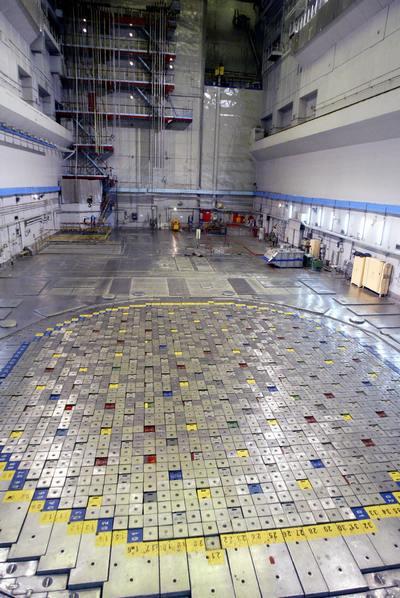 Литовские власти закроют за час до полуночи 31 декабря атомную электростанцию в Висагинасе. Фото: STRINGER/AFP/Getty Images