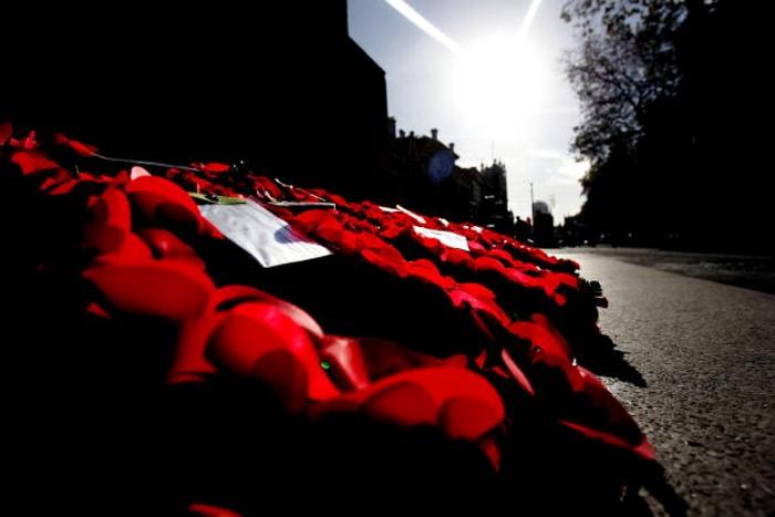 К 100-летию со дня компьенского перемирия между Германией и странами-союзниками. Фоторепортаж. Фото: Scott Barbour, Mark Nolan, Matt Cardy/Getty Images