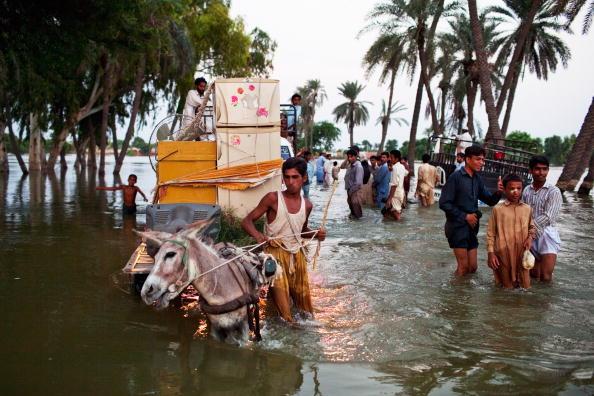 Наводнение в Пакистане и его последствия ООН назвала критическими. Фоторепортаж. Фото: Daniel Berehulak/Getty Images
