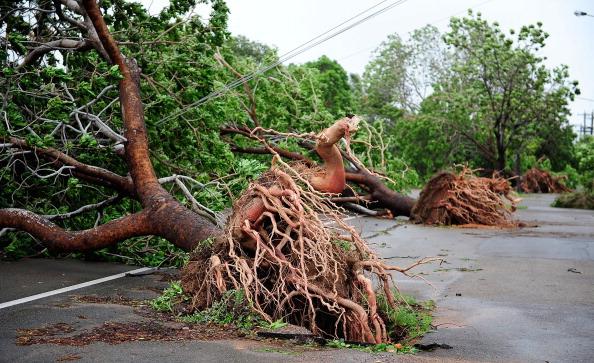 Циклон «Яси» (Yasi). в Австралии оставил без электричества 170 тысяч домов. Фото: Ian Hitchcock/Jonathan Wood/Getty Images