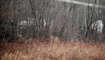 Самолет ТУ-154М разбился при посадке на «Северном» аэродроме Смоленска 10 апреля. Аркадиуш Протасюк  пытался избежать катастрофы Ту-154М, ему не хватило 5 секунд. Фото: JACEK TURCZYK/AFP/Getty Images