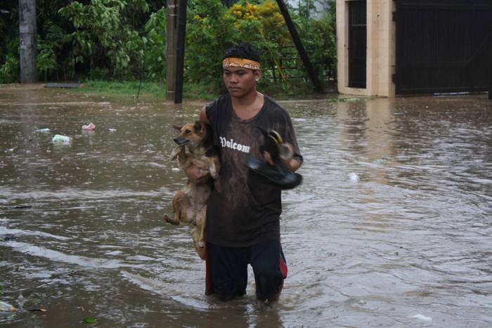 Фоторепортаж о последствиях тайфуна Bopha на Филиппинах в провинции Компостела  в поселке Mabini. Фото: Jeoffrey Maitem/Getty Images