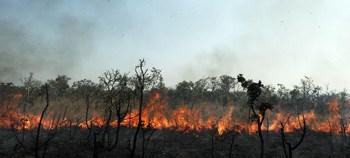 Огненный торнадо пронесся по Бразилии. Фото: EVARISTO SA/AFP/Getty Images