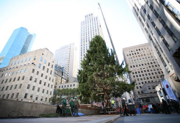Рождественская елка устанавливается в  Рокфеллер-центре в Нью-Йорке. Фоторепортаж. Фото: STAN HONDA/AFP/Getty Images