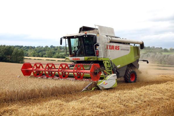 Фото: Сбор урожая пшеницы в Канаде идет полным ходом. Фото: Christopher Furlong/Getty Images