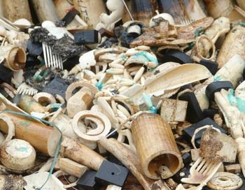 Изделия из слоновой кости в Габоне приготовлены для сожжения.  Фото:   WILS YANICK MANIENGUI/AFP/GettyImages