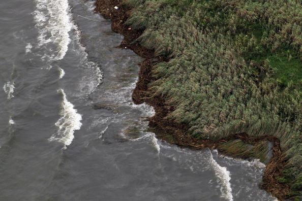 Тропический ураган «Алекс» достигает побережья Мексиканского залива. Фоторепортаж. Фото: Joe Raedle/Getty Images
