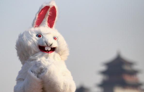 Год кролика по восточному календарю вступил в свои права. Фоторепортаж. Фото: Lintao Zhang, Feng Li/Getty Images