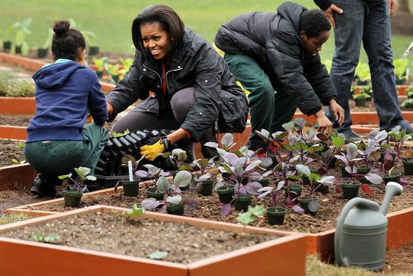 Первая леди со школьниками в огороде Белого дома. Фото: Alex Wong/Getty Images