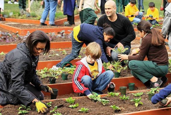 Уже третий сезон в огороде Белого дома, части кампании за здоровое питание. Фото: Alex Wong/Getty Images