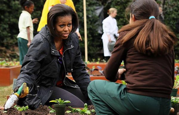Мишель Обама пишет книгу о здоровом питании. Фото: Alex Wong/Getty Images