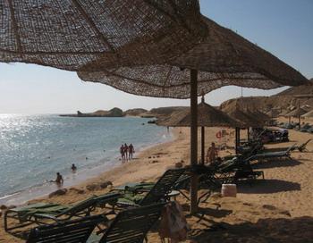 Атаки акул в Египте: новыми жертвами стали туроператоры.  Фото: KHALED DESOUKI/AFP/Getty Images
