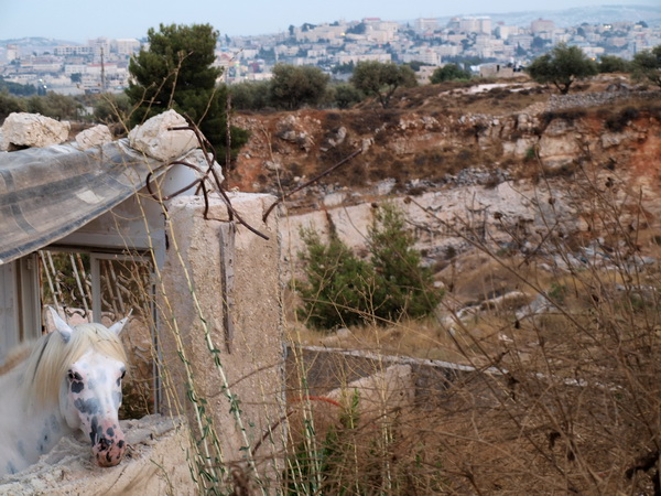 В Иерусалимском районе Гило сносят защитную стену. По ту сторону стены. Фото: Хава Тор/Великая Эпоха
