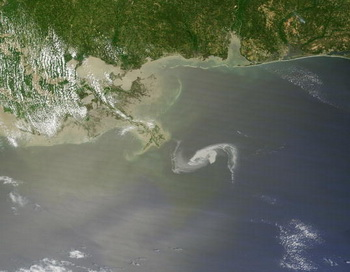 Нефтяное пятно в Мексиканском заливе. Фото: NASA via Getty Images