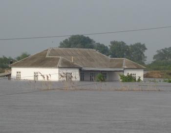 Наводнение на реке Кура. Фото с сайта apa.az
