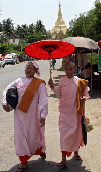 Буддийские монахини прячутся под зонтиком от солнца. Фото: AFP/AFP/Getty Images