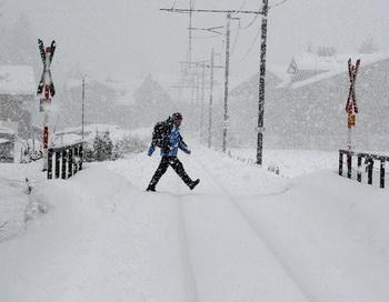 В Забайкальском крае обрыв питающей линии произошёл из-за налипания мокрого снега на провода. Фото: Yuri Kadobnov/AFP/Getty Images