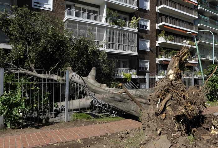 После сильной бури в столице Аргентины Буэнос-Айресе. Фото: JUAN MABROMATA/AFP/Getty Images