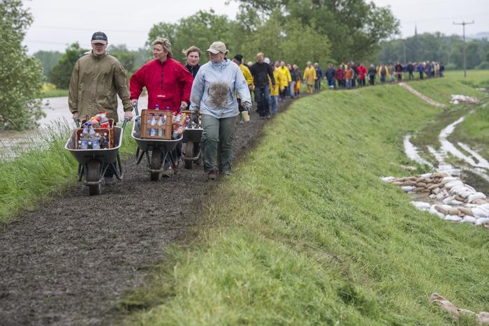 Жители Зёммерде (Германия) уплотняют дамбу на реке Гера. Фото: Jens Schlueter/Getty Images