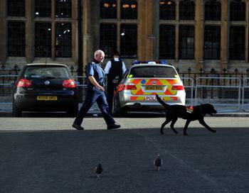 Полиция на территории Вестминстерского аббатства. Фото: DIMITAR DILKOFF/AFP/Getty Images