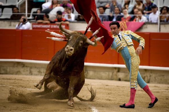 Фоторепортаж о третьей корриде в Барселоне. Фото: avid Ramos/Getty Images