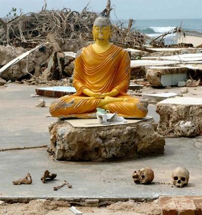 2) По ту сторону жизни: статуя Будды  среди развалин и скелетов, которые были вымыты из близлежайшего кладбища смертельным цунами 26 декабря в юго-западном прибрежном городе Кахава в Шри-Ланке, 2 января 2005 года. (Равиндран / AFP / Getty Images)