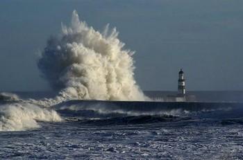 В Великобритании 50 тысяч человек из-за шторма остались без электричества. Фото: priroda.su