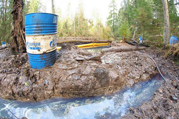 Разлив нефтепродуктов в Ленинградской области. Фото: picasaweb.google.com
