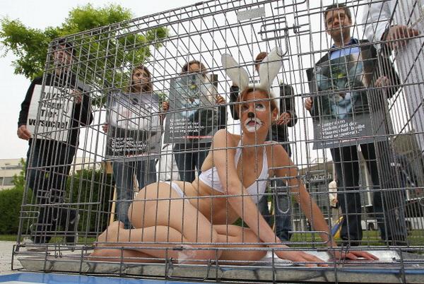 Жертвы препаратов Duogynon провели акцию протеста против акционеров фармацевтической компании Bayer. Фото: Christof Koepsel/Getty Images