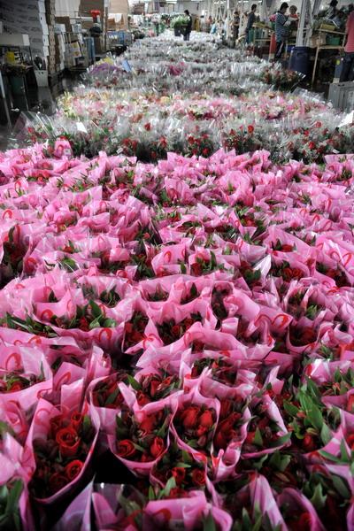 Компании по продаже цветов во всем мире готовятся к празднику 8 марта. Фото: Carlos Alvarez/Getty Images