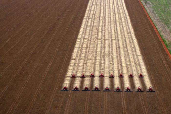 Увеличивается прогноз урожая масличных культур. Сбор урожая в Бразилии. Фото: YASUYOSHI CHIBA/AFP/GettyImages
