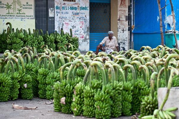 Сокращаются объёмы международной торговли. Фото: MANAN VATSYAYANA/AFP/Getty Images