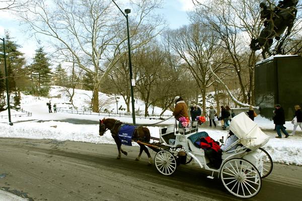 Сюрпризом может стать поезка в карете по городу. Фото: Thos Robinson/Getty Images for NIVEA