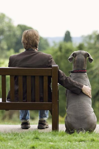 Друзья навеки. Фото: photos.com