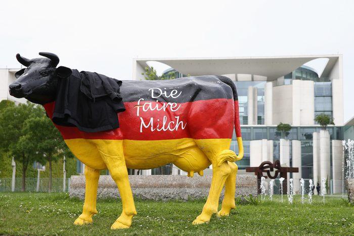 Молочные фермеры протестуют перед Ведомством канцлера в Берлине против окончания квот на молоко в 2015 году. Берлин, 4 июня 2013 г. Фото: Andreas Rentz/Getty Images