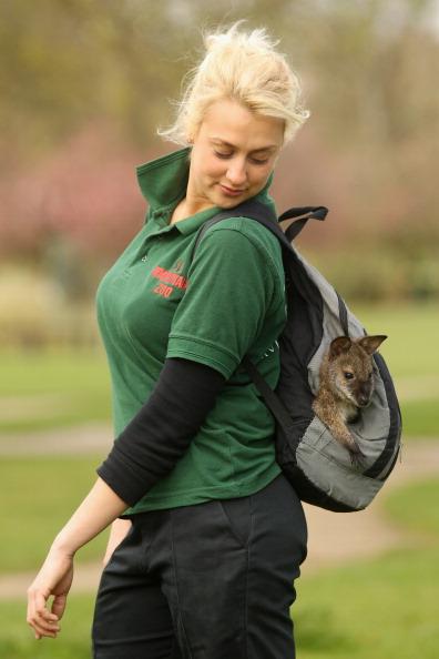 Семимесячная кенгуру Бенетта со своей приёмной мамой Джо Ширли в Бердфоршире (Великобритания). Фоторепортаж. Фото: Oli Scarff/Getty Images