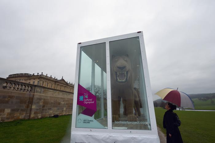 Посетитель дома герцога и герцогини Девоншир рассматривает проект «Львиное сердце» художницы Шауны Ричардсон (Shauna Richardson) в Чатсуорте (Chatsworth), Англия. Фоторепортаж. Фото:  Christopher Furlong / Getty Images
