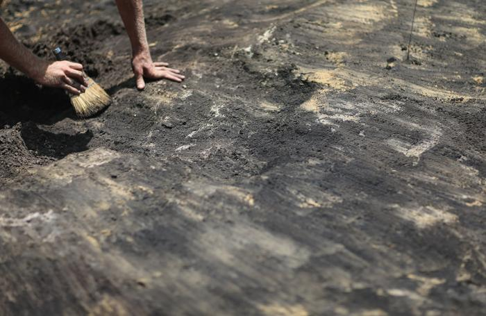 В Майами ведут раскопки индейской деревни. Фото: Joe Raedle/Getty Images