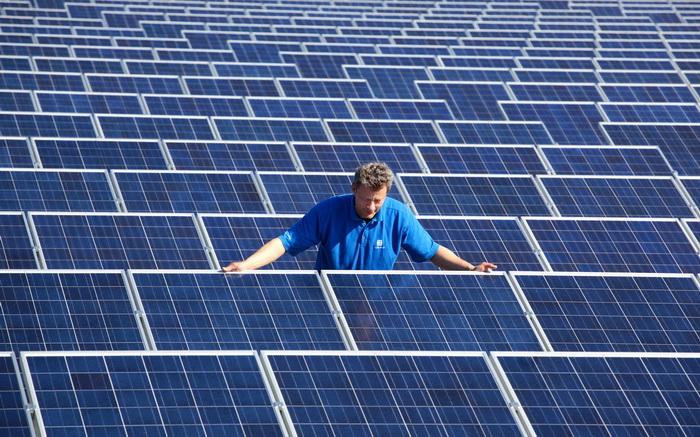 Обанкротилась ведущая компания производителей солнечных панелей. Фото: MICHAEL URBAN/AFP/Getty Images
