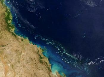 Снимок Большого Барьерного рифа со спутника НАСА. Фото:  HO/AFP/Getty Images
