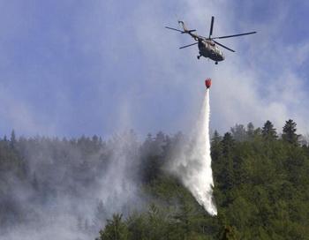 В Австрии установлен температурный рекорд – 39,9 градуса. Фото: Gabriel Liptak/AFP/Getty Images