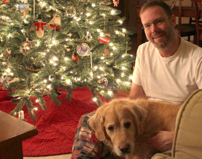 Как сделать Новый год безопасным для домашних питомцев. Фото: John M/flickr.com