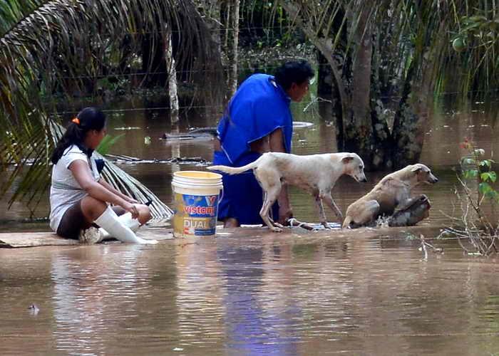 Боливия. Наводнение. Фото: AIZAR RALDES/AFP/Getty Images